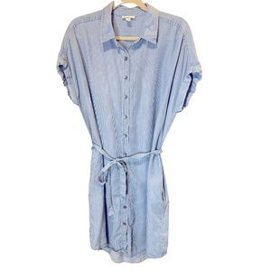 Goodthreads Blue/ white striped button down dress